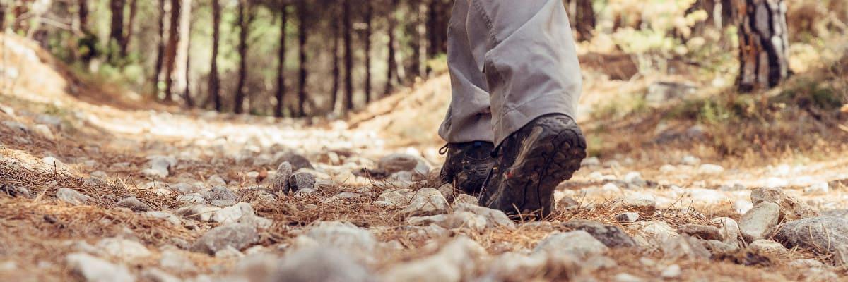 Mejor Calzado de Trekking y Senderismo