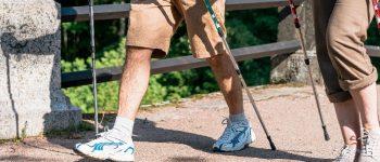 bastones senderismo y trekking