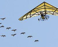 vuelo ala delta españa
